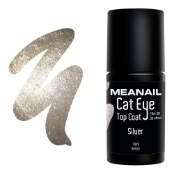 Photo de vernis Top Coat Cat Eye Silver